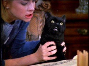 "Sabrina ""petting"" Salem in Sabrina the Teenage Witch"
